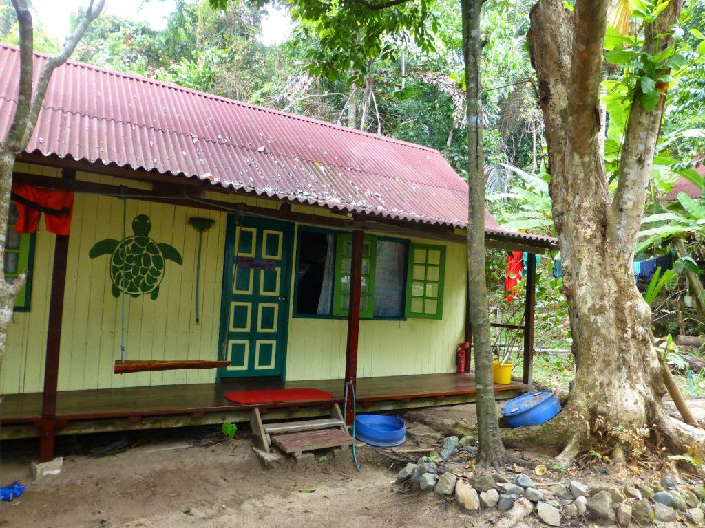 Juara Turtle Project - Tioman Island, Malaysia