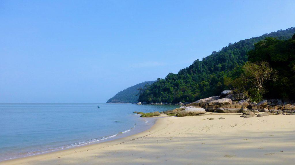 The National Park on Pulau Penang - Malaysia
