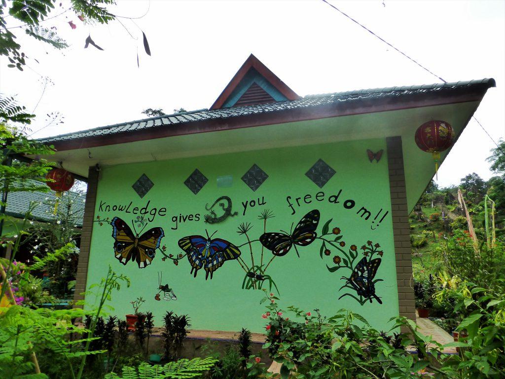 Batcave at Bukit Lawang