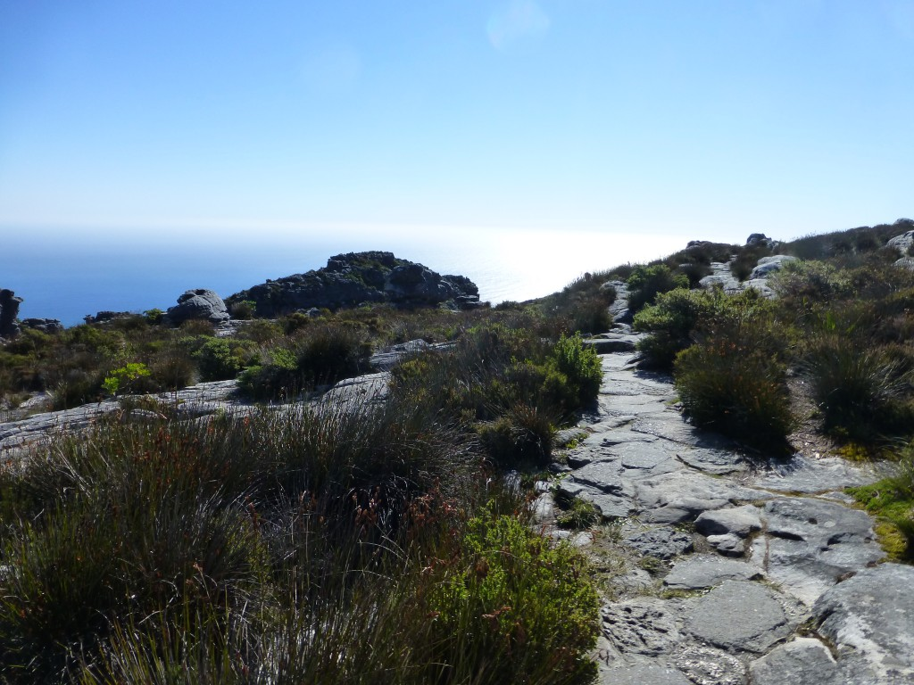 Going Up Table Mountain, Cape Town - South Africa