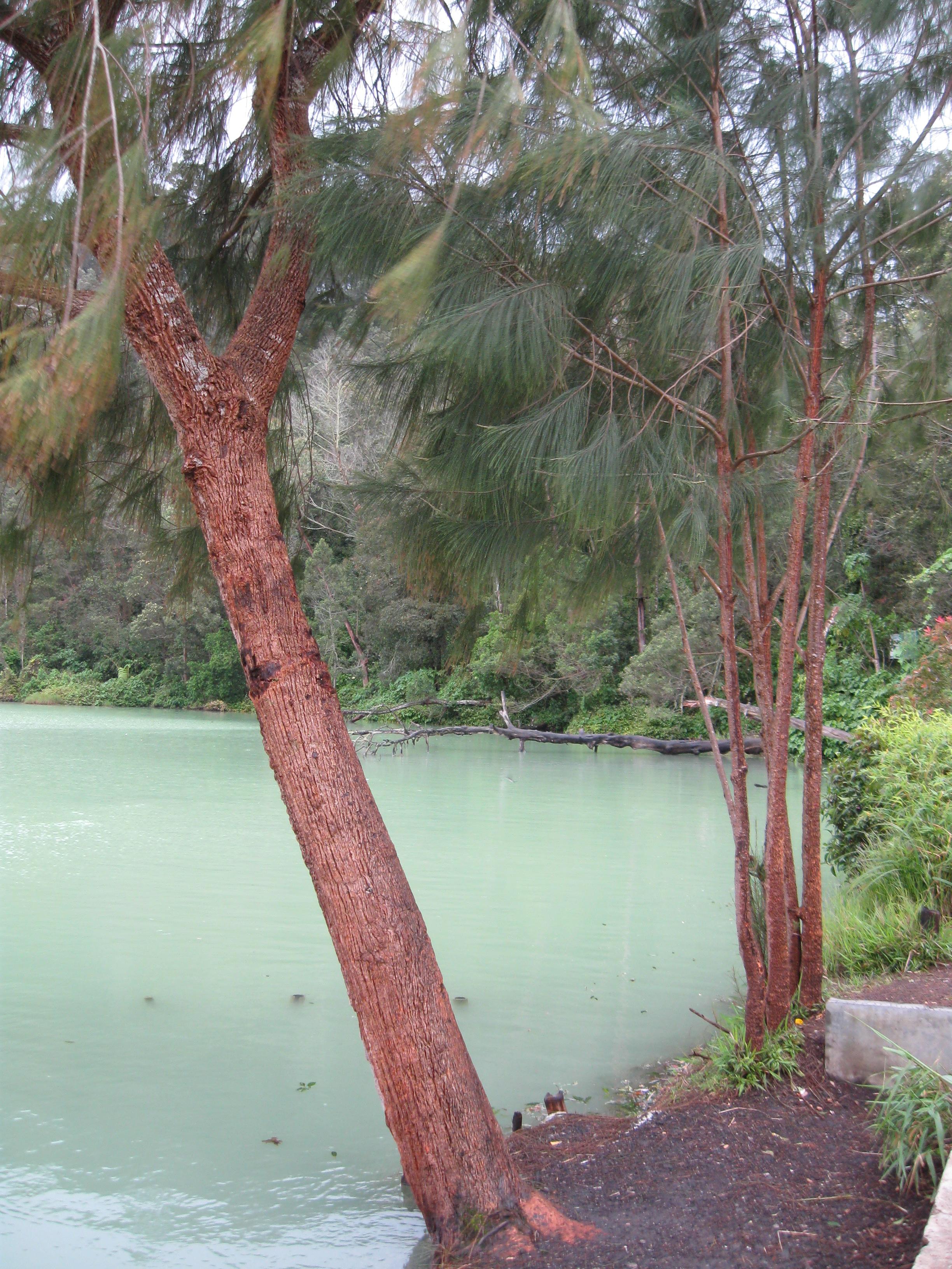 Java Dieng Plateau