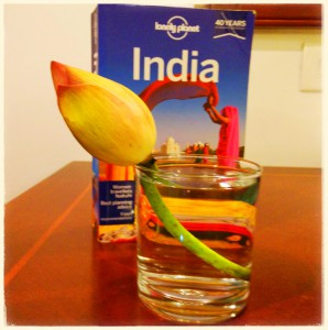 Lotus, India - Backpacken
