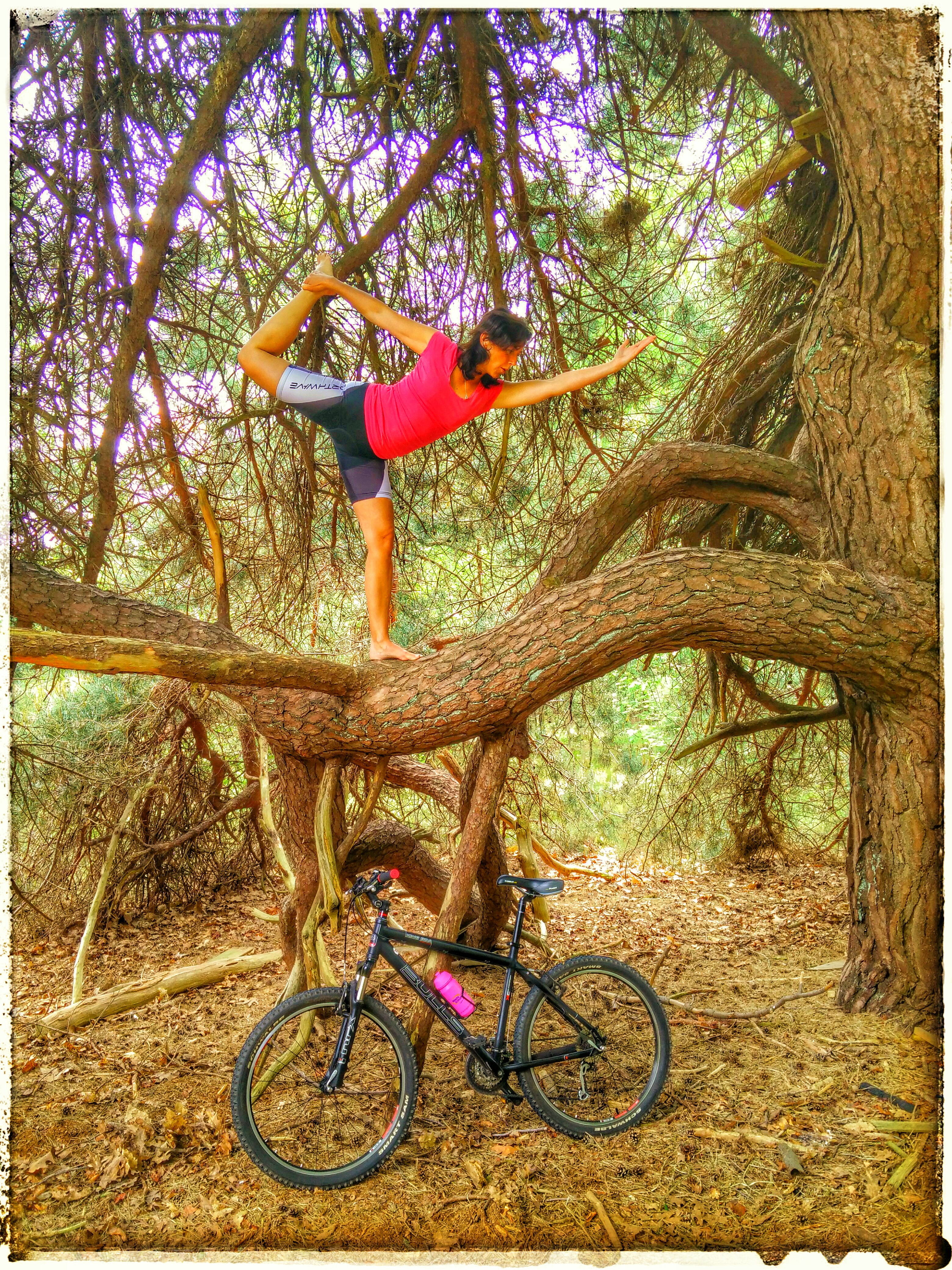 Dancers Pose in a tree, Yoga