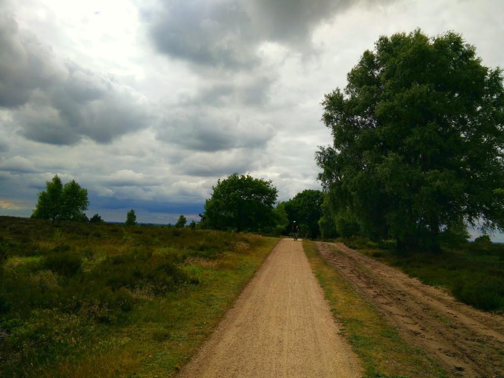 Landscape, Hellendoorn