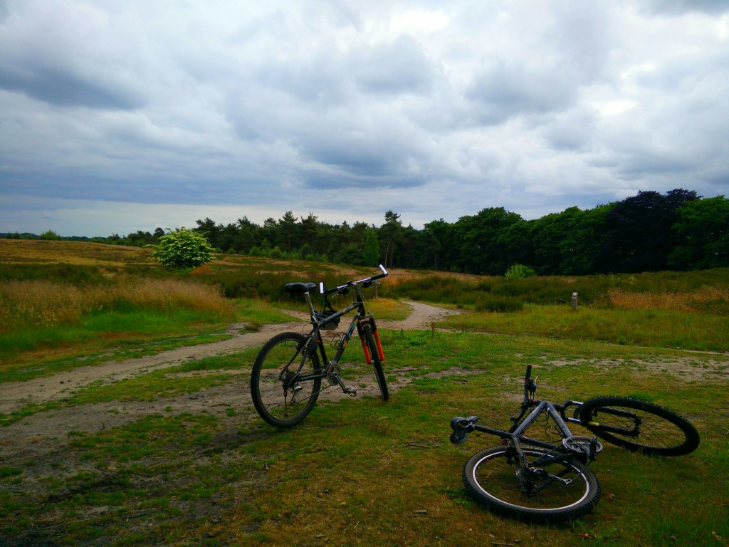 Mountainbiking Hellendoorn