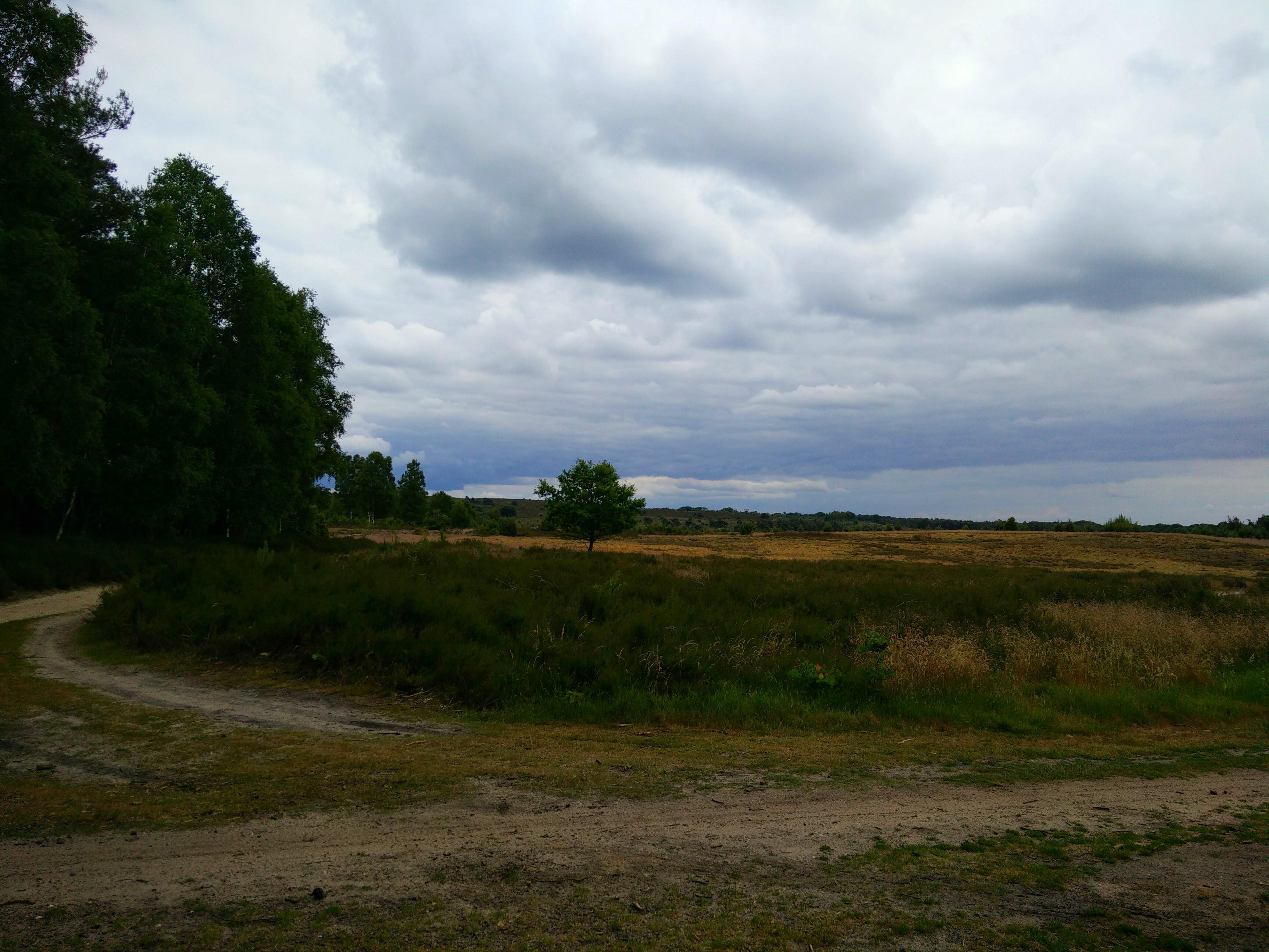 Landscape hellendoorn