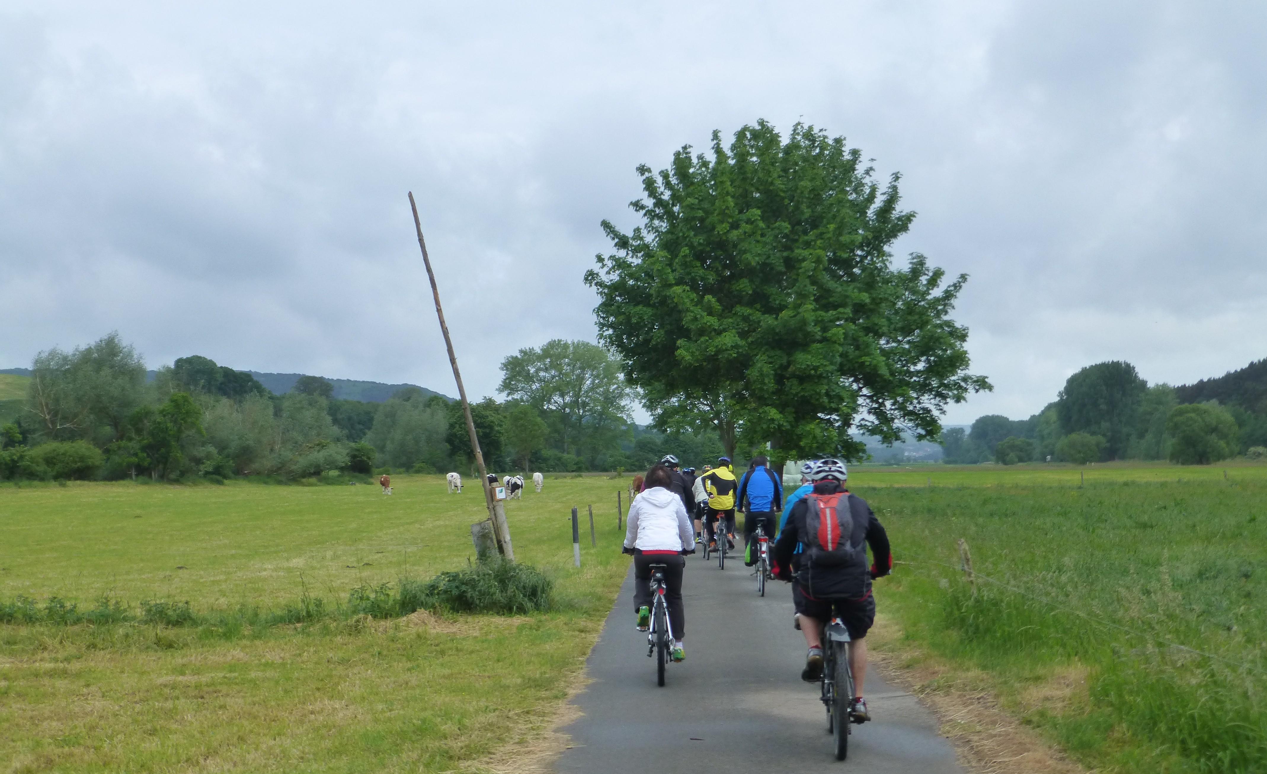 Cycling Desenberg