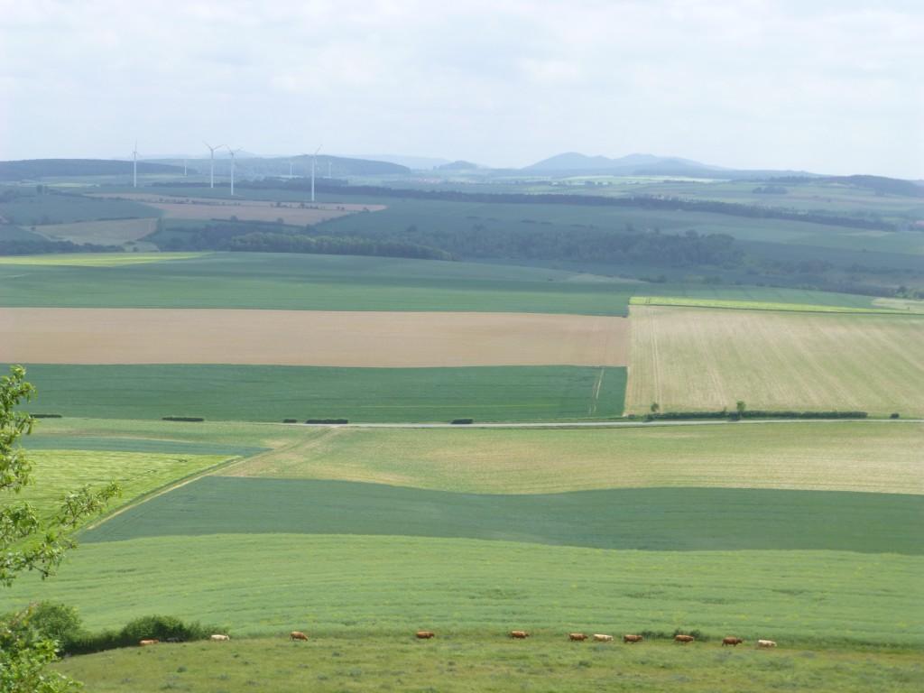 View landscape Desenberg