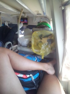 Travel Safe, Vietnamese Sleeperbus