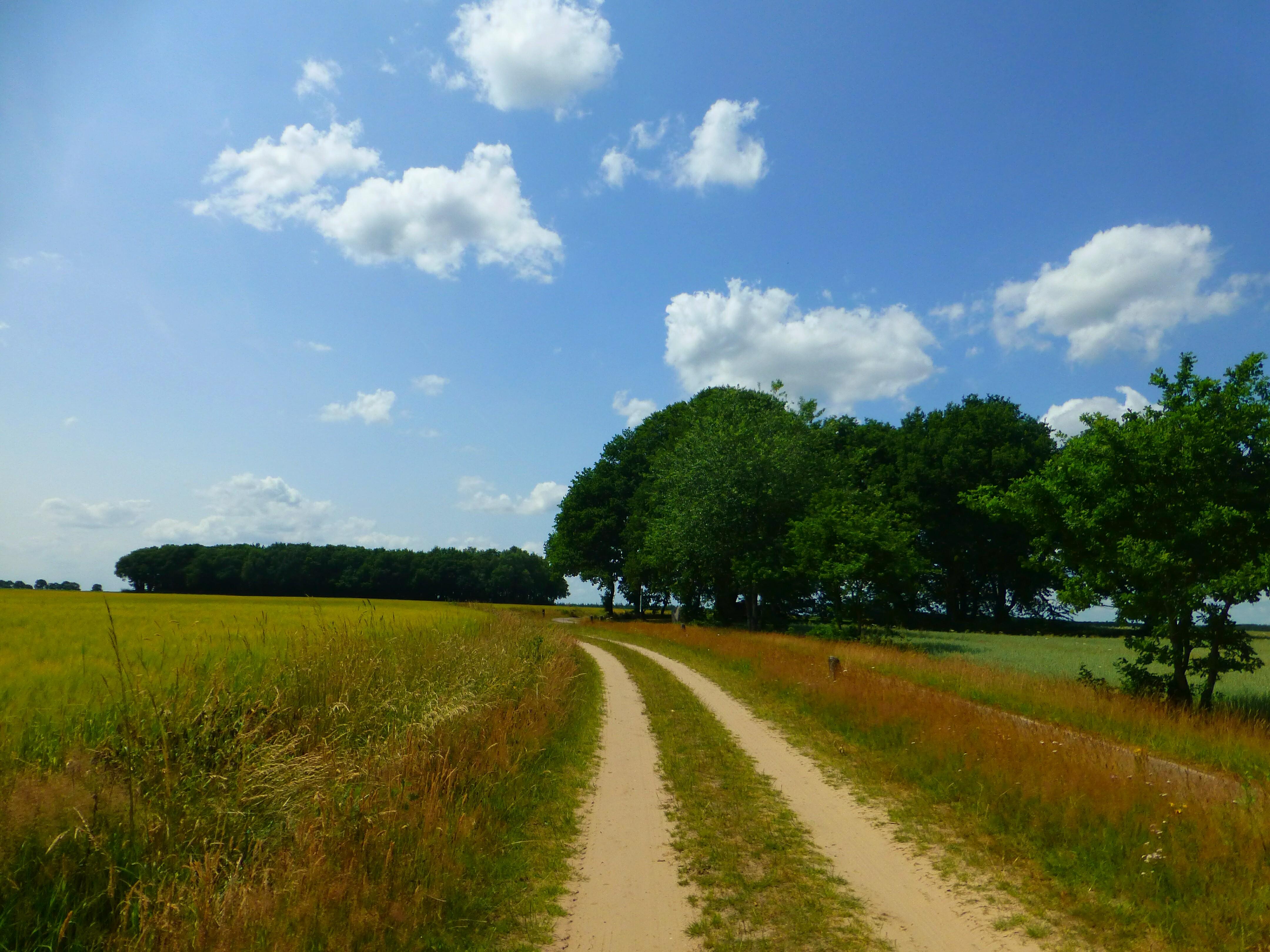 Landscape Drenthe, Dolmen
