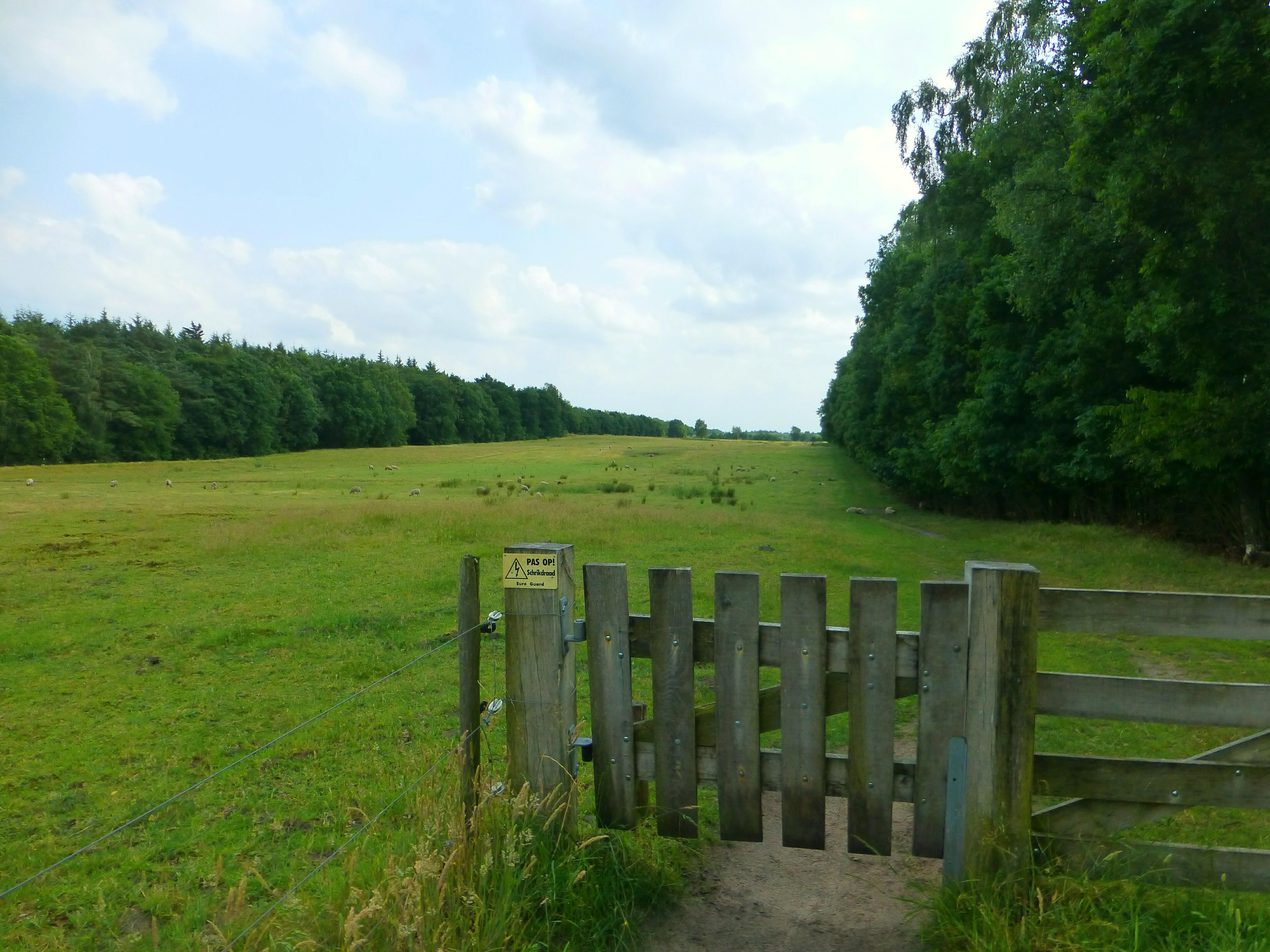Landscape View, Dolmen