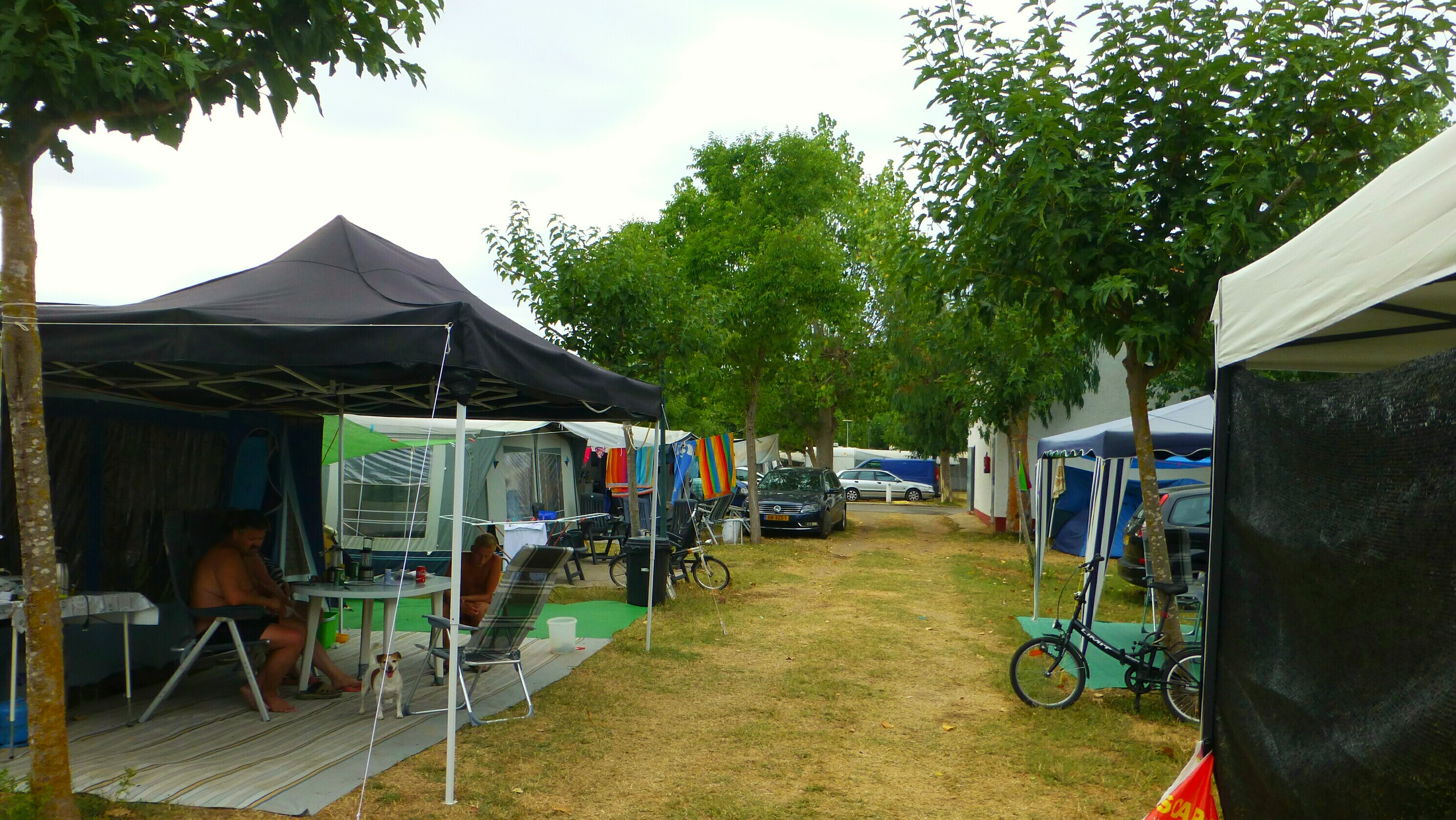 Camping Ter