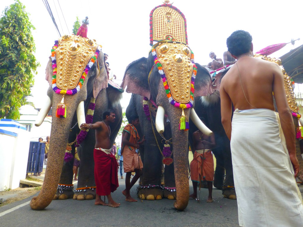 Rituals, Roasted Rice and Holy elephants