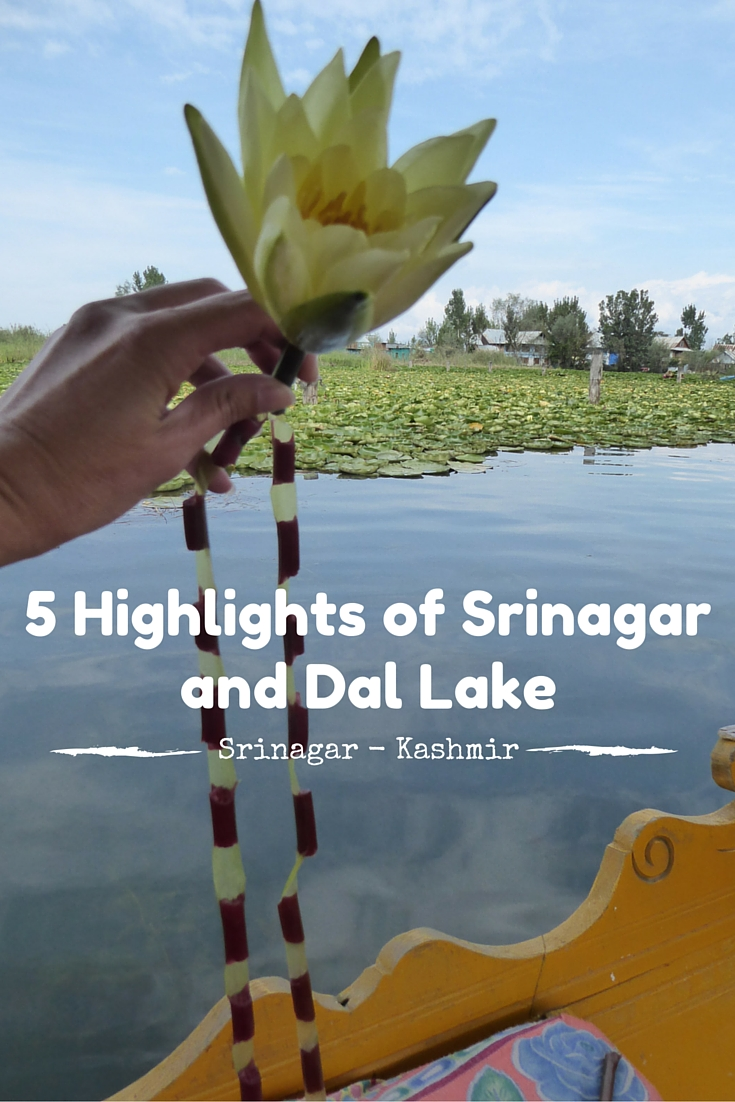 5 Highlights of Srinagar and Dal Lake