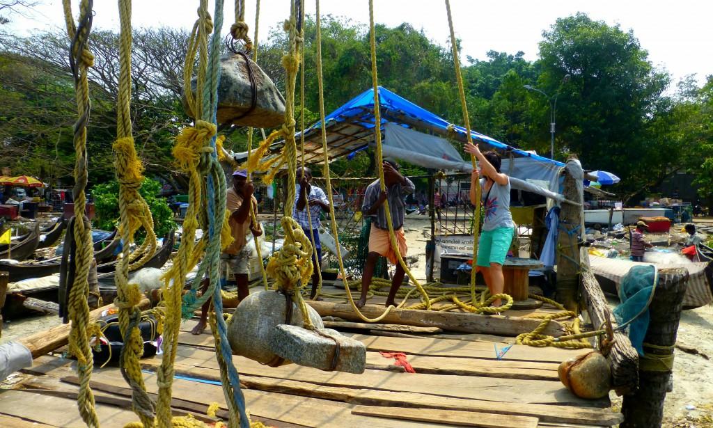 Highlights Cochin - Chinese Fishingnets