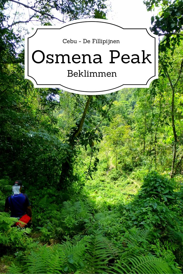 Osmena Peak Beklimmen, Cebu -De Fillipijnen. Lang stil zitten kan ik niet en toen was dit de geschikte uitdaging!!