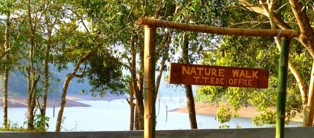 Periyar Tiger Reserve, Thekkady - Kerala, India