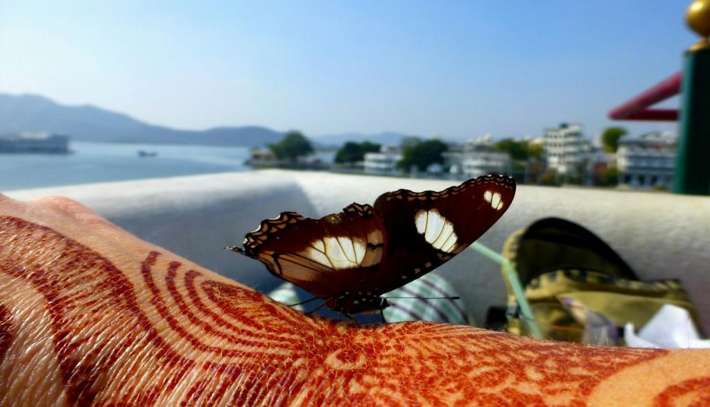Rondreis India, Udaipur - Pichola meer