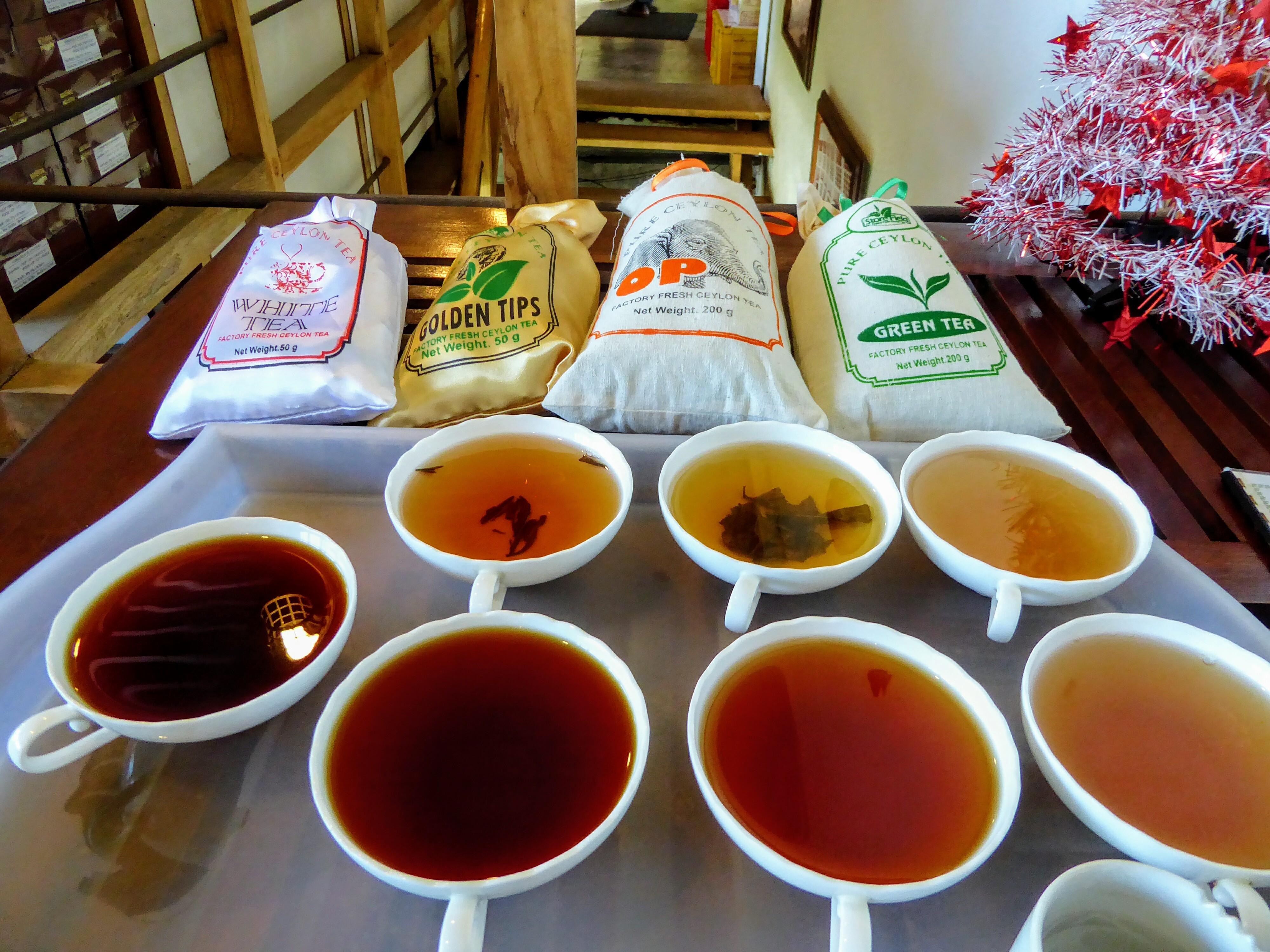 Teaplantation Nuwara Eliya