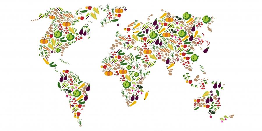 vegetarische uitdaging
