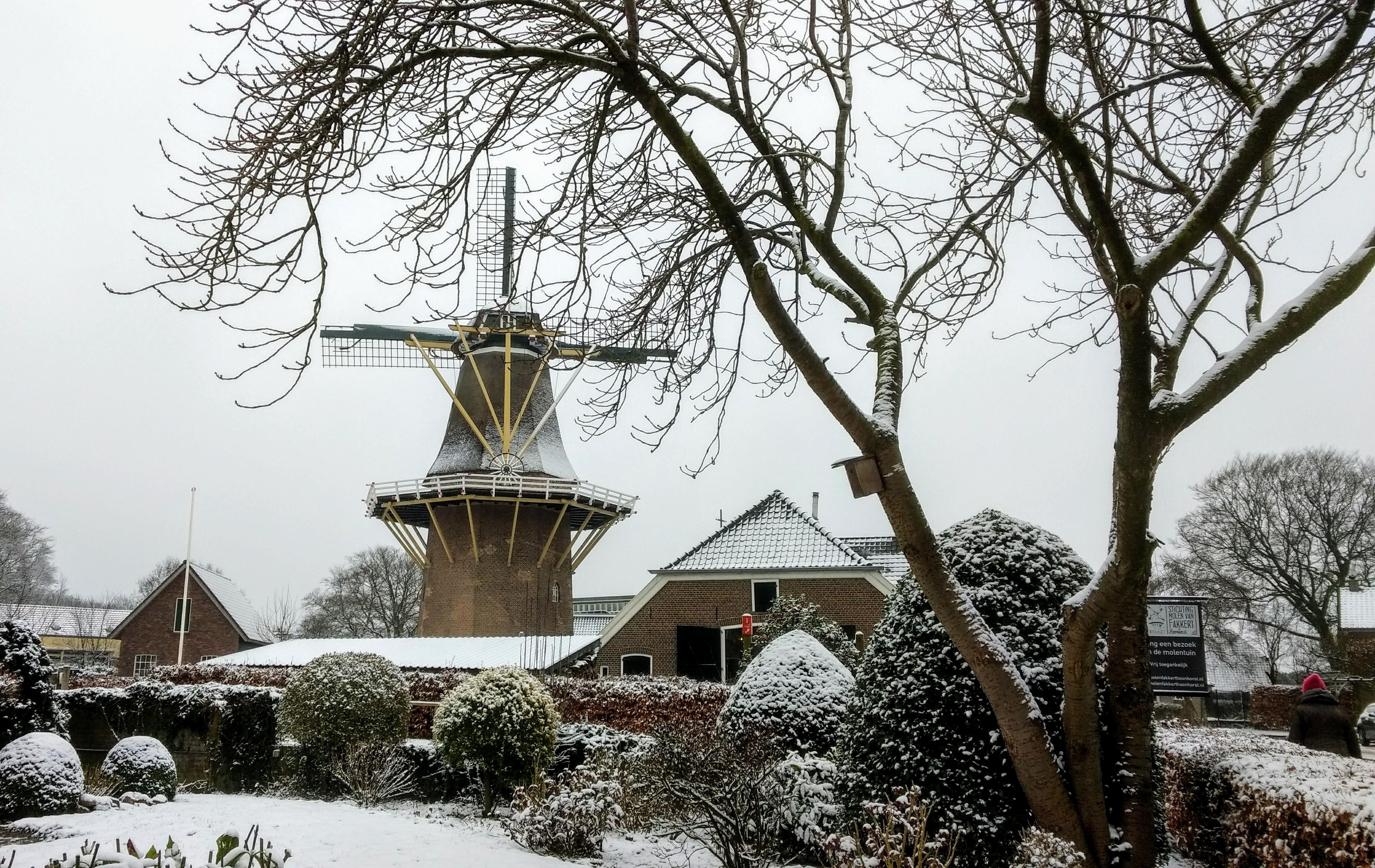 Gegarandeerd Onregelmatig - Landgoed Hoonhorst