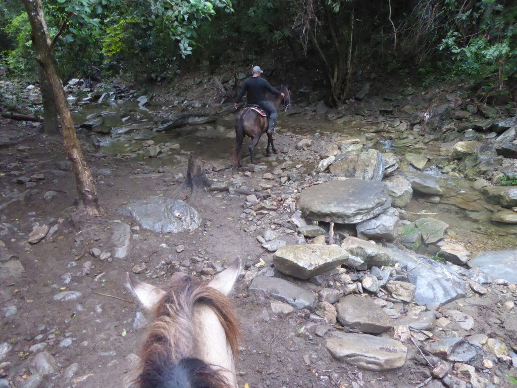 Horseback riding in Topes de Collantes