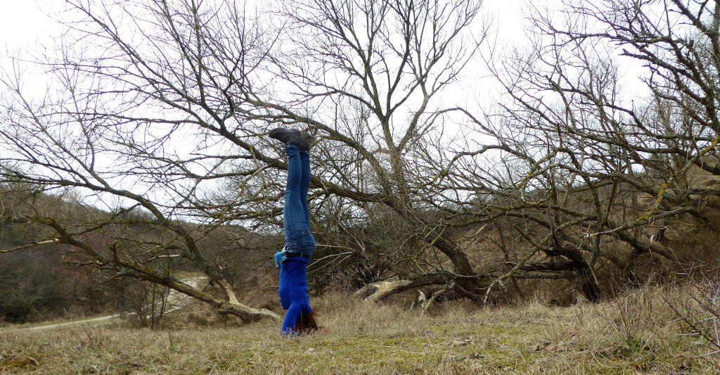 Yoga @Kennemerduinen