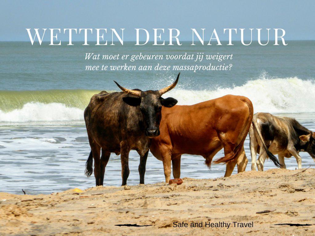 Wetten der natuur