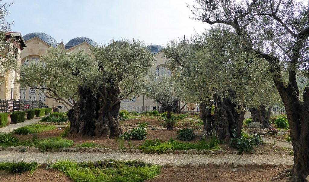 Bezoek Jeruzalem! Israel