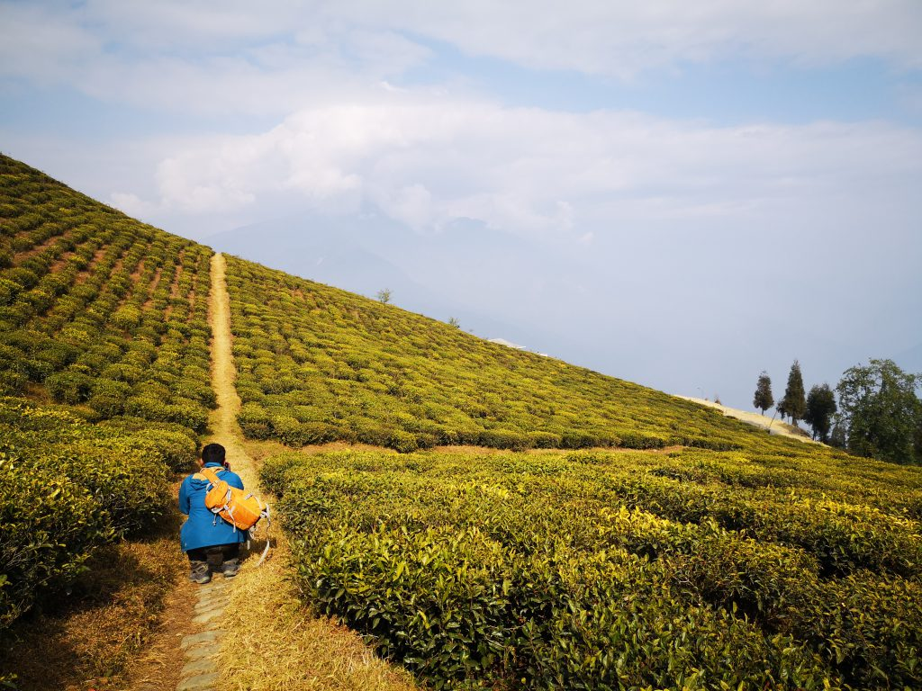 Reisgids Namchi & omgeving - Sikkim, India