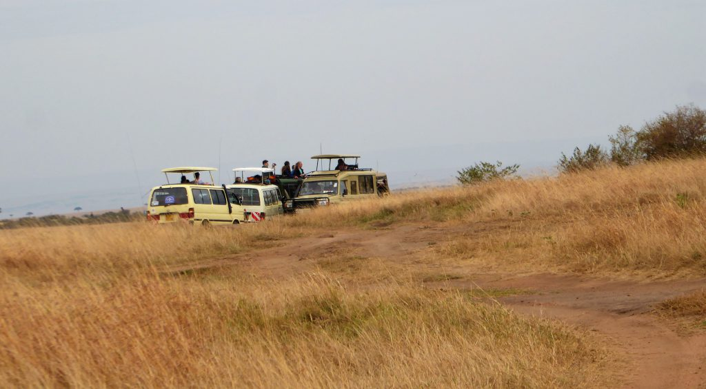3 day Safari at the Masai Mara - Kenya