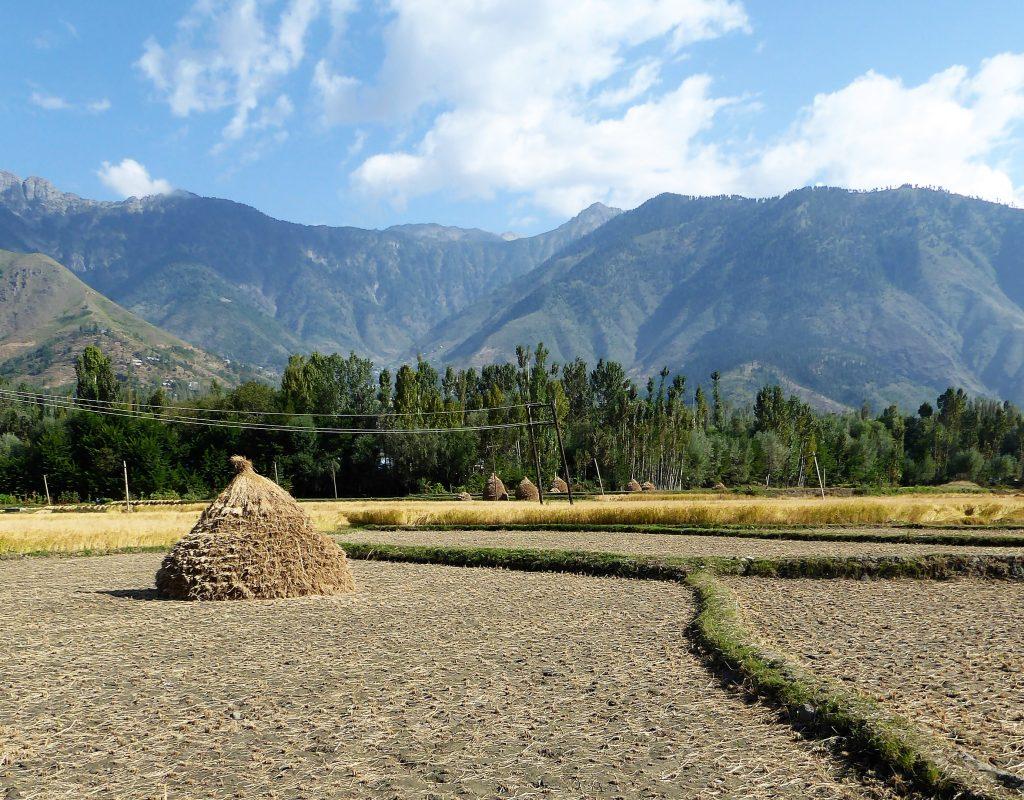 Uitzicht onderweg naar Sonamarg, Kashmir - India