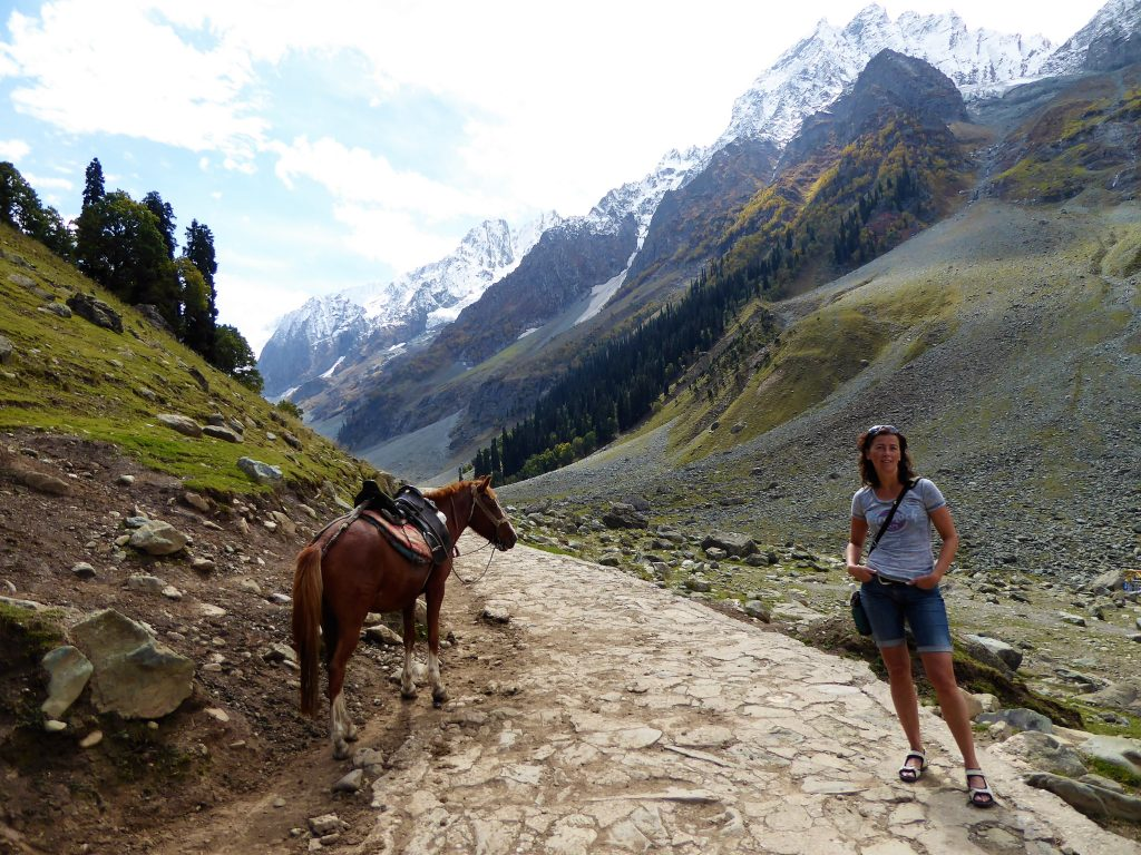 Are you going by foot or by horse - Thajiwas Glacier, Sonamarg - Kashmir - Noord India