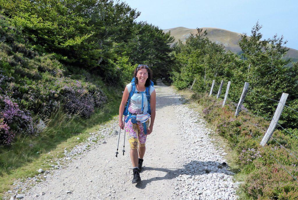 Pyreneen Camino Frances - Spanje